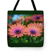African Daisy Twins Tote Bag