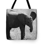 African Elephant Calf Tote Bag