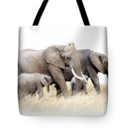 African Elephant Group Isolated Tote Bag