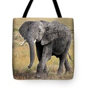 African Elephant Happy And Free Tote Bag
