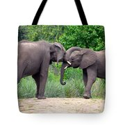 African Elephants Interacting Tote Bag