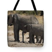 African Elephants Mother And Baby Tote Bag