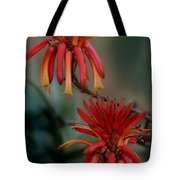 African Fire Lily Tote Bag