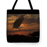 African Fish Eagle At Sunset  Tote Bag by Larry Linton