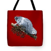 African Grey Parrot A Tote Bag