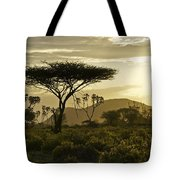 African Interlude Tote Bag
