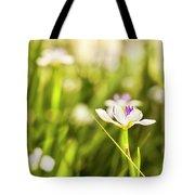 African Iris Bokeh Tote Bag