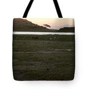African Lake Tote Bag