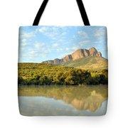 African Landscape Tote Bag