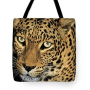 African Leopard Panthera Pardus Captive Wildlife Rescue Tote Bag