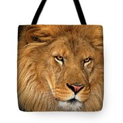 African Lion Panthera Leo Wildlife Rescue Tote Bag