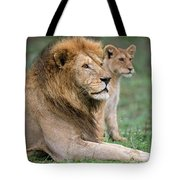 African Lion Panthera Leo With Its Cub Tote Bag