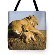 African Lion With Mother's Tail Tote Bag by Suzi Eszterhas
