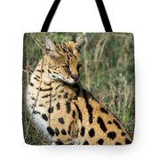 African Serval In Ngorongoro Conservation Area Tote Bag