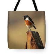 African Stone Chat Tote Bag