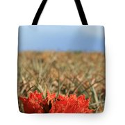 African Tulip Blossom Over Pineapple Field Aloha Makawao Tote Bag
