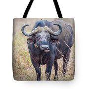 African Water Buffalo And Friends Tote Bag