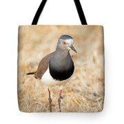 African Wattled Lapwing Vanellus Tote Bag