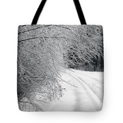After An Ice Storm Tote Bag