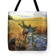 After Big Thaw Tote Bag