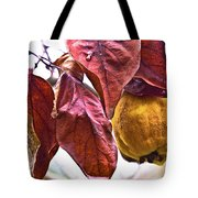 After Rain - Fall In Mendocino Orchard Tote Bag