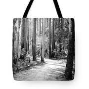 After The Burn  Tote Bag