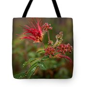 After The Desert Rain Tote Bag