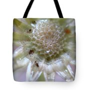 After The Glitter Fades Tote Bag