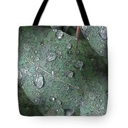After The Rain 4 Tote Bag