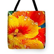 After The Rain Color Tote Bag