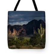 After The Rain In The Superstitions  Tote Bag