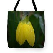 After The Rain - Yellow Daffodil 2 Tote Bag