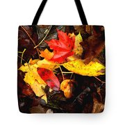 After The Rains Of Autumn Tote Bag