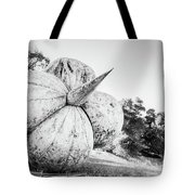 After The Reign Tote Bag
