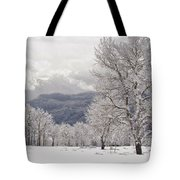 After The Storm 3 Tote Bag