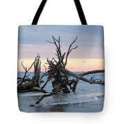 After The Storm At St. Helena Tote Bag