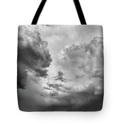After The Storm Bw  Tote Bag