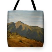 Afternoon At Bhatghar Tote Bag
