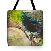 Afternoon Beside The Lane Cove River Tote Bag