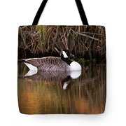 Afternoon Relax Tote Bag