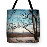 Afterr The Blizzard Tote Bag