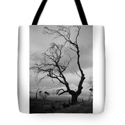 Against Sky Tote Bag by Lee Stickels