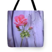 Against The Barn Wall  Tote Bag