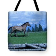 Against The Clouds Three Tote Bag
