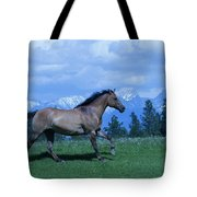 Against The Clouds Two Tote Bag