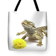 Agama And Dandelion  Tote Bag