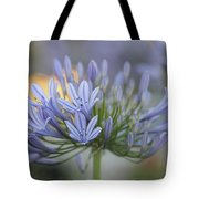 Agapanthus Africanus - Lily Of The Nile 2 Tote Bag