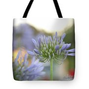 Agapanthus Africanus - Lily Of The Nile Tote Bag