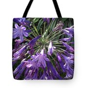 Agapanthus Flowers In Purple - New And Old Tote Bag
