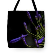 Agapanthus In The Shadows Tote Bag